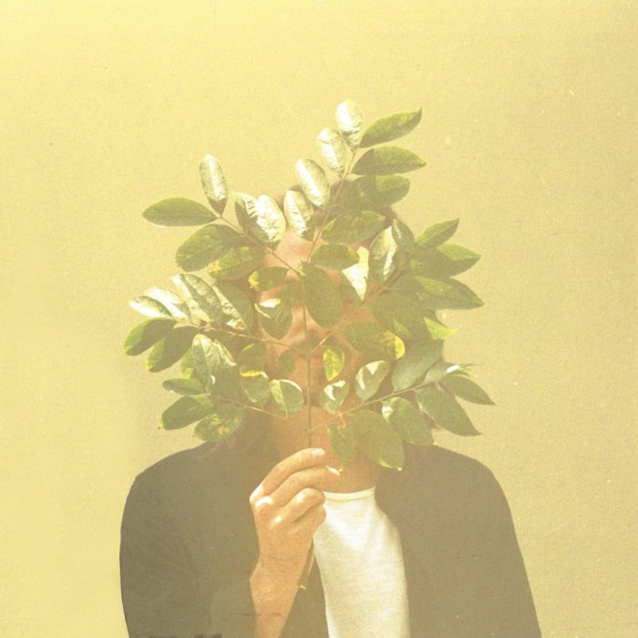 cover_album_french_kiwi_juice